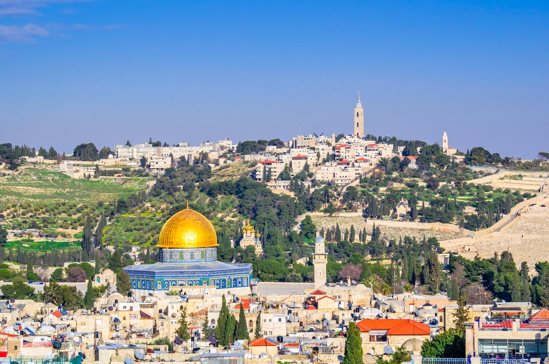 Fondazione EMO - Progetto Palestina